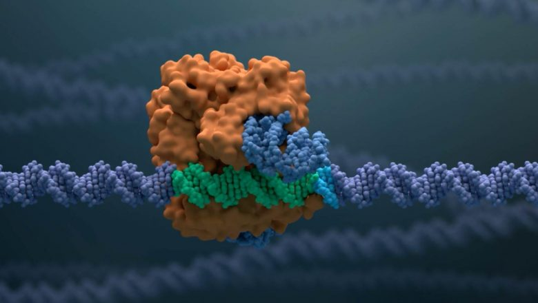 Cas9 Video Thumb